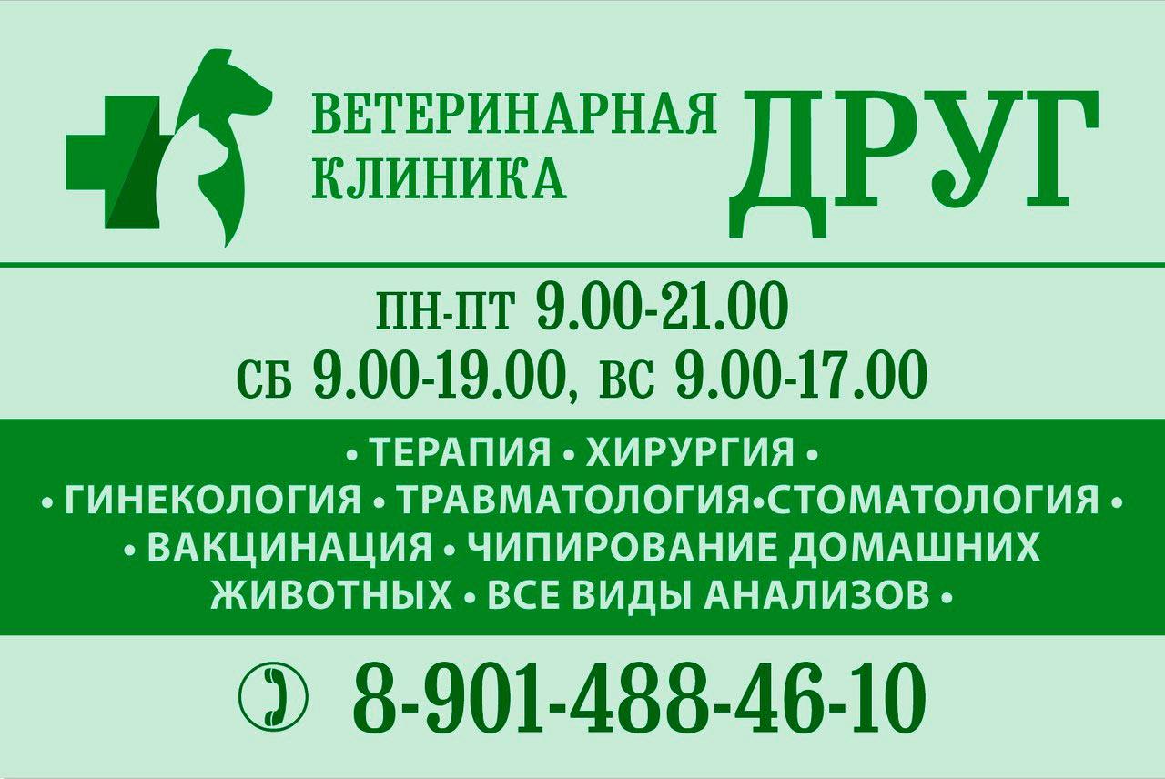 Ветеринарная клиника «Друг»